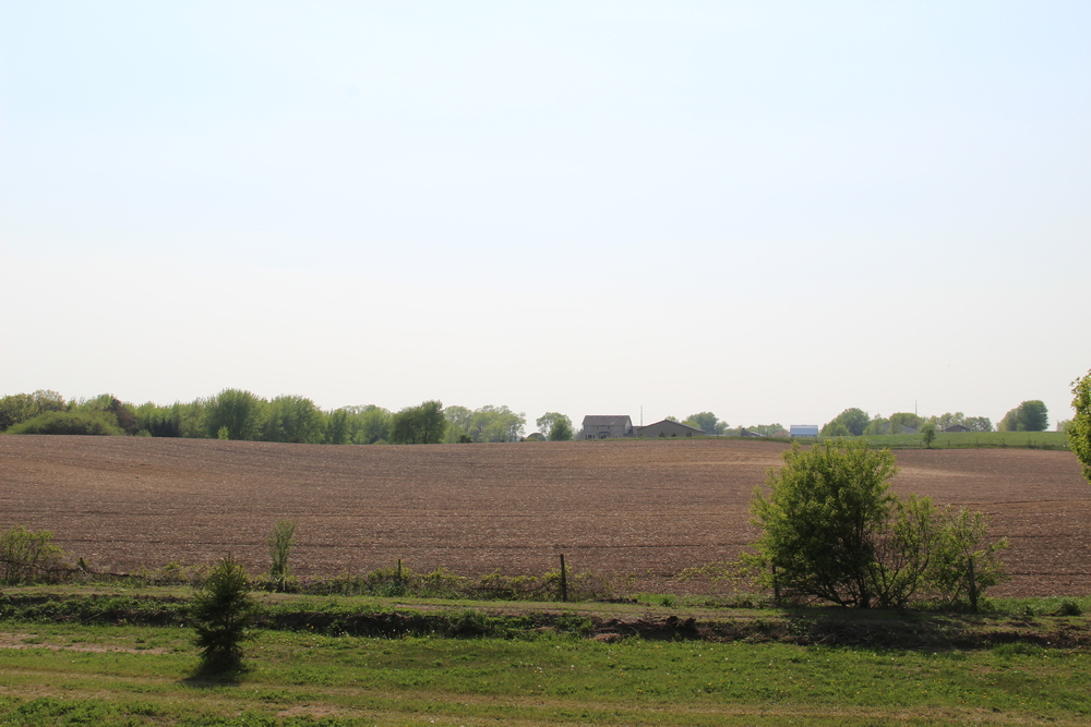 Surrounding Farmland