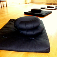 http://people.carleton.edu/~cborn/omeka/Northfield_Buddhist_Meditation_Center/NBMC_Mats_and_Pillows.jpg